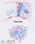 Pancrease.jpg