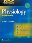 rbs physiology.jpg