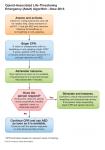 2-BLS-Opioid-Associated-Emergency-Algorithm.png