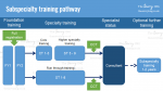 Subsepcialty-training-pathway