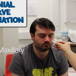 Cranial Nerve Examination - OSCE Guide (Old Version)