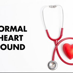 Normal Heart Sounds - MEDZCOOL